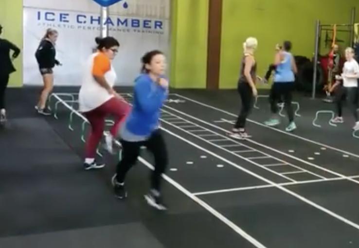 Female Powerlifting Series Update