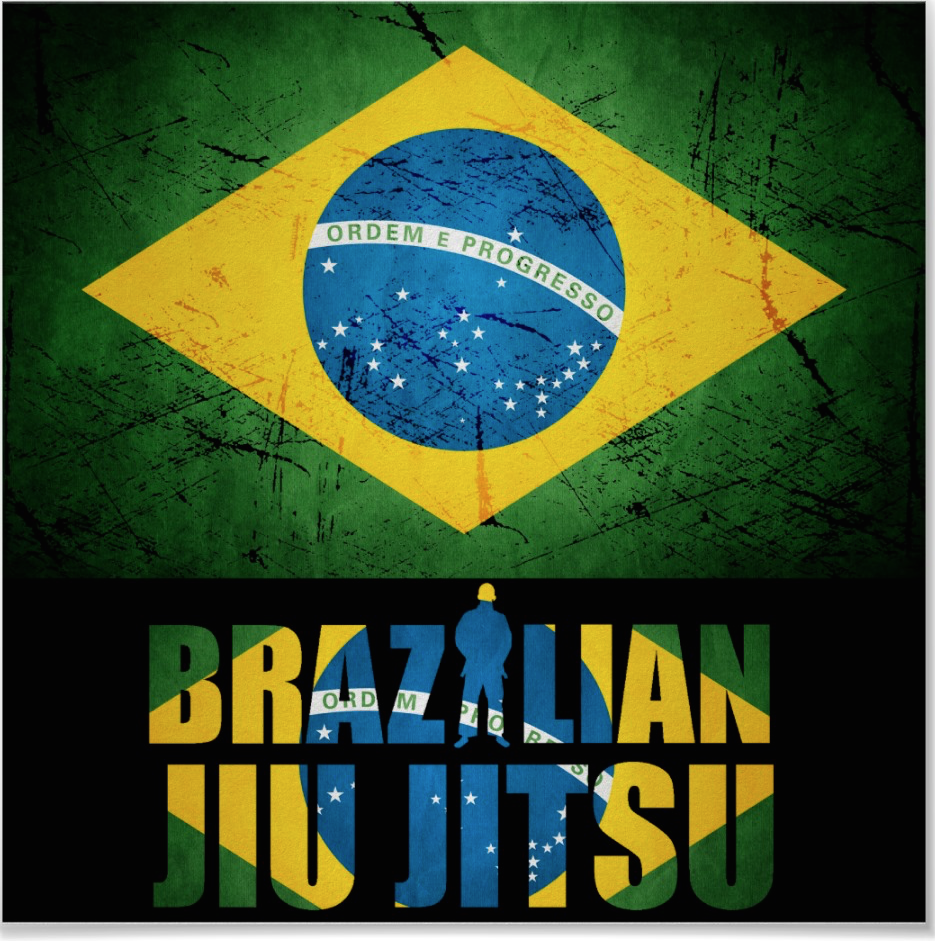 Brazilian Jiu Jitsu Volume 1 Submissions Submissions Submissions Details
